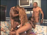 Phat Azz Brazilian Orgy 3 Scene 2