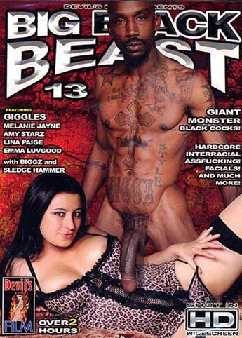 Big Black Beast 13