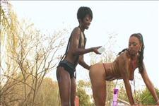 True Lesbian Divas Scene 4