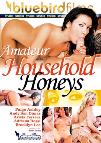Amateur Household Honeys from Bluebird Films front cover