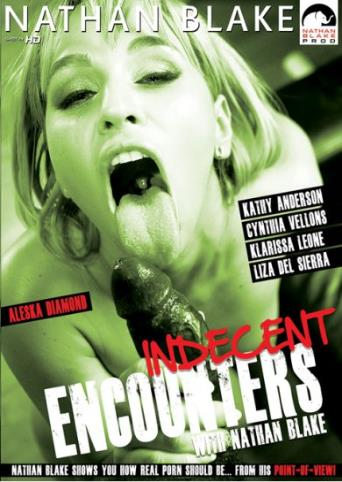 Indecent Encounters from Nathan Blake front cover