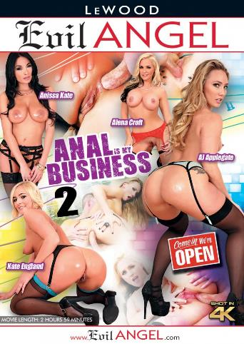 Anal Is My Business 2