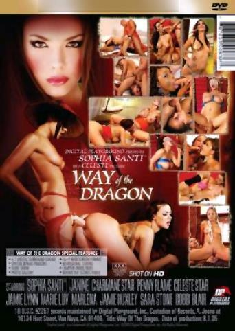 Way Of The Dragon from Digital Playground back cover