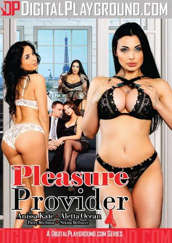 The Pleasure Provider from Digital Playground front cover