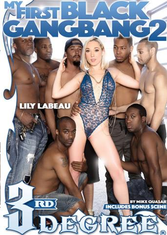 My First Black Gangbang 2 from 3rd Degree front cover