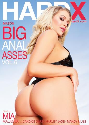 Big Anal Asses 6 from Hard X front cover
