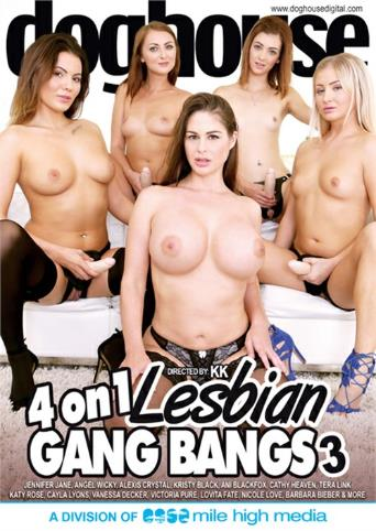 4 On 1 Lesbian Gangbangs 3 from Doghouse front cover