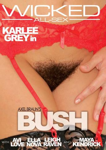 Axel Braun's Bush from Wicked front cover