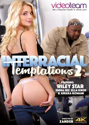Interracial Temptations 2