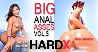 Big Anal Asses 5